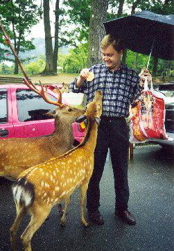 V Nare jsem krmil jeleny a lane, 1999